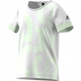 CAMISETA ADIDAS YG ID GRAPHIC